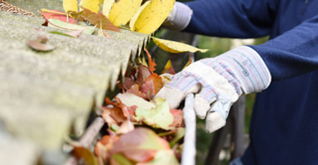 How to clean your house gutter well